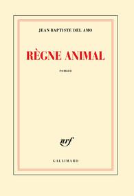 """Résultat de recherche d'images pour """"regne animal"""""""